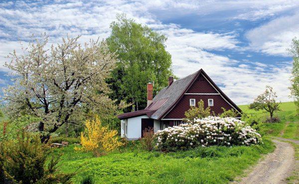 Maak jouw tuin klaar voor de zomer!